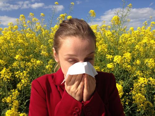 Top tips for managing hay fever symptoms   Moorfields Eye
